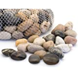 Royal Imports 5lb Large Decorative Polished Gravel River Pebbles Rocks for Fresh Water Fish Animal Plant Aquariums…