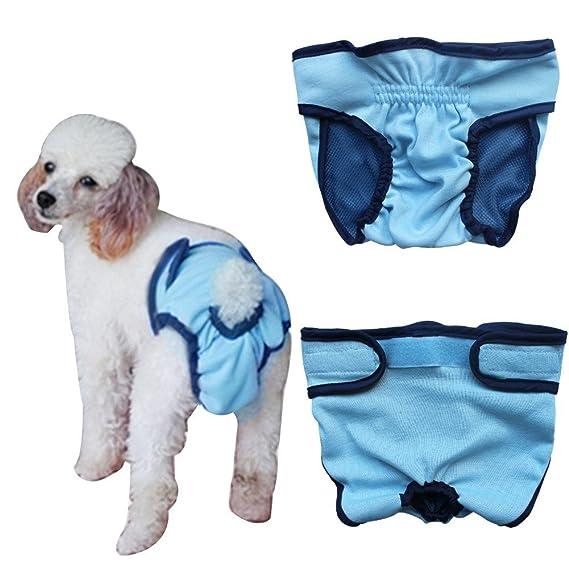 Freebily Pañal Reutilizable Lavable para Mascota Perro Gato Cachorro Braguita Grande Ajustable Permeable al Aire Azul
