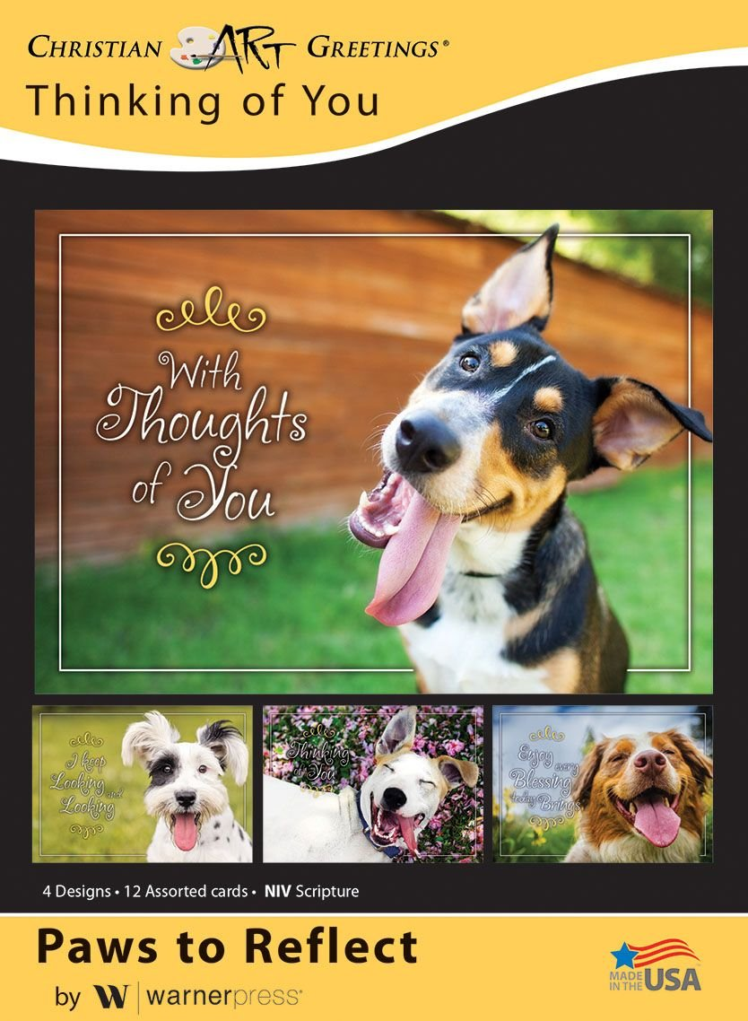 Amazon Paws To Reflect Thinking Of You Greeting Cards Niv