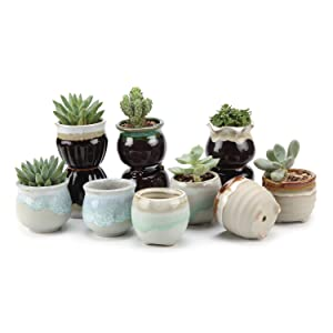 T4U 2.5 Inch Ceramic Flowing Glaze Black&White Base Serial Set Succulent Plant Pot/Cactus Plant Pot Flower Pot/Container/Planter Pack of 12 for Christmas Gift