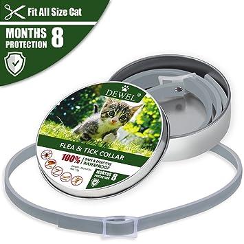 Iseebiz Dewel Collar Antiparasitario Gato/Perro para Contrar los Parásitos Pulgas, Garrapatas, Piojos y Mosquitos(S)