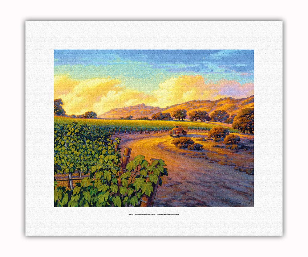 Pacifica Island Art - Vineyard Sunset - Wine Country Art by Kerne Erickson - Fine Art Rolled Canvas Print - 11in x 14in