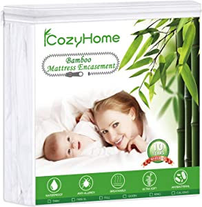 iCozyhome Premium Zippered Encasement, Queen Waterproof Mattress Protector, Hypoallergenic Noiseless Breathable, Safe Sleep for Adults and Kids,Vinyl Free
