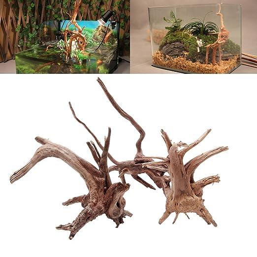 Longsw - Adorno de Madera Natural para Acuario, Acuario, Acuario, pecera, Planta: Amazon.es: Productos para mascotas