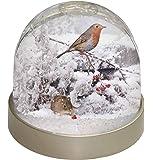 Advanta Maus und Robin Snow Globe Weihnachten Geschenk, Mehrfarbig, 9,2x 9,2x 8cm