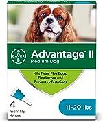 Advantage II Medium Dog Flea Prevention, Topical Flea Treatment for Dogs