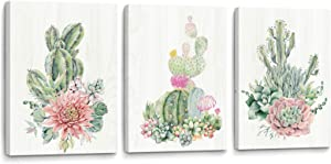 YJYart Framed Wall Art for Bedroom Canvas Prints Artwork Modern Popular Wall Plants Decorations 3 Panel Kitchen Bathroom Wall Decor Colorful Cactus Picture Size 16x24x3 Easy to Hang