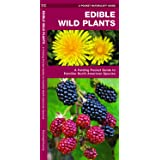 Edible Wild Plants: A Folding Pocket Guide to Familiar North American Species (Outdoor Skills and Preparedness)