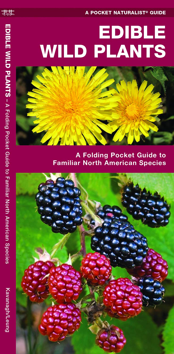 Edible Wild Plants: A Folding Pocket Guide to Familiar North American  Species (A Pocket Naturalist Guide): James Kavanagh, Waterford Press,  Raymond Leung: ...