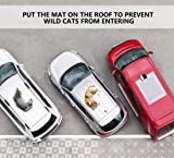 Upgraded Pet Scat Cat Mat for Dogs Cats