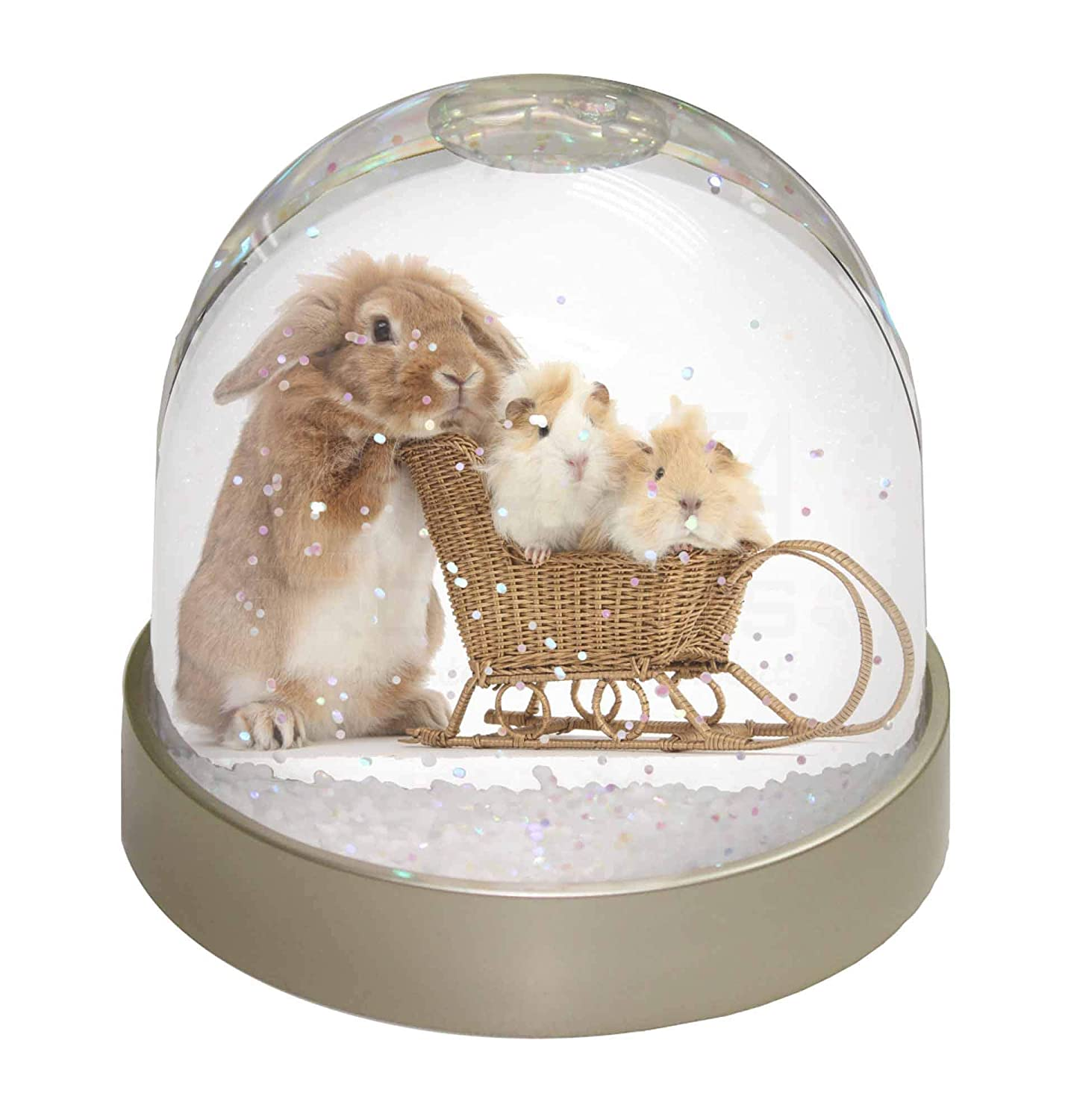 AR-12GL Rabbit and Guinea Pigs Photo Snow Globe Waterball Stocking Filler Gift
