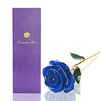 Amazon Com Econoled Long Stem Dipped 24k Gold Trim Red Rose In Gift