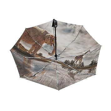yoshop Auto paraguas, diseño de elefante y ciervos automático resistente al viento lluvia paraguas plegable sombrilla: Amazon.es: Deportes y aire libre