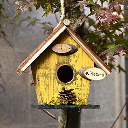 zenggp Casas Rurales Retro Casa De Pájaros De Madera Jardín Casa para Pájaros Colgando Decoración para Exteriores,C: Amazon.es: Hogar