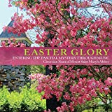 Easter Glory: Entering the Paschal Mystery Through