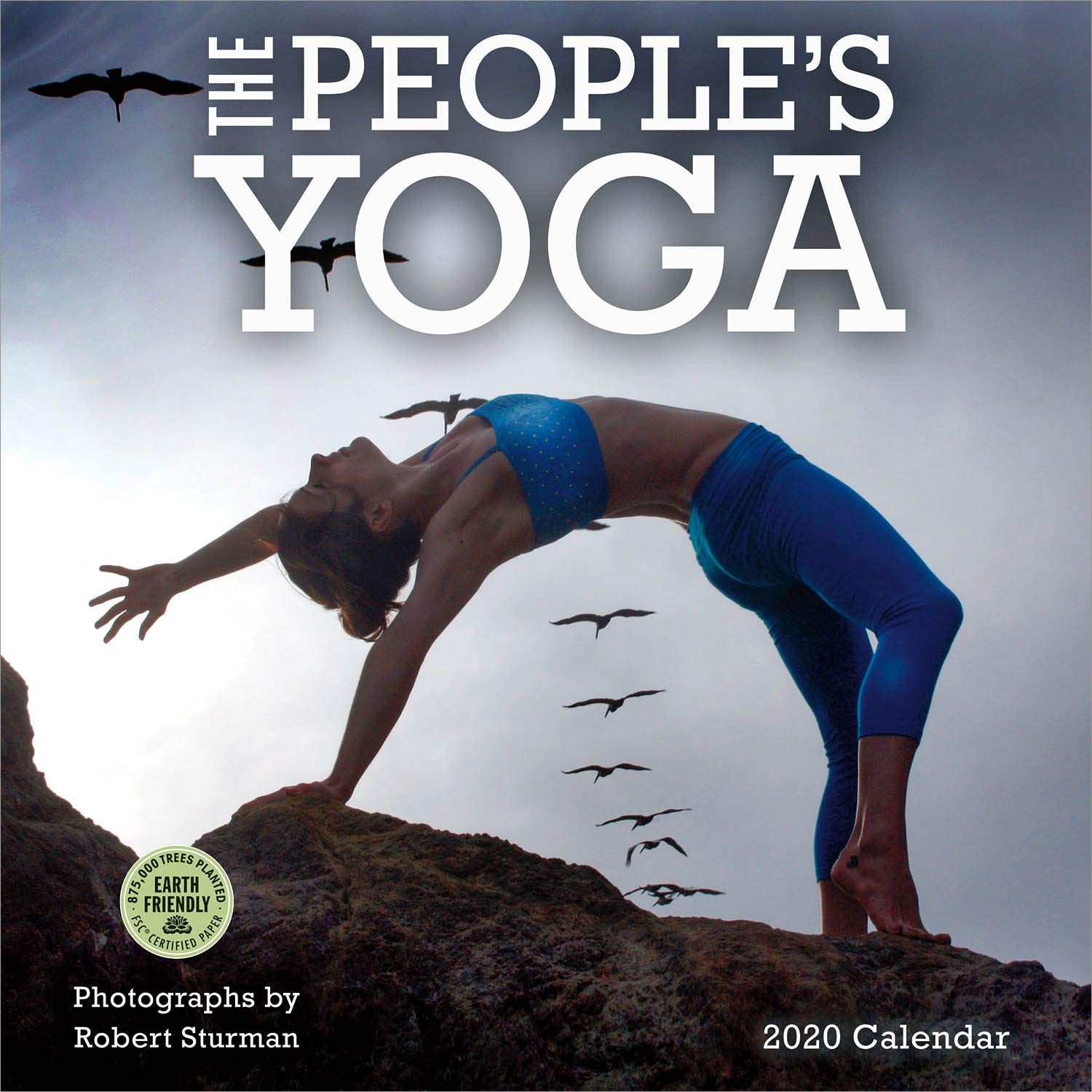The Peoples Yoga 2020 Wall Calendar: Amazon.es: Robert ...