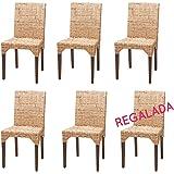 Lote de 6 sillas Vitor de kubu