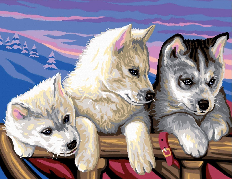 Motif maison en bord de lac 30 x 40 cm KSG Bo/îte de kit de peinture Mammut 8240044 /« Painting By Numbers /»