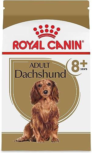 Royal Canin Breed Health Nutrition Dachshund 8 Adult Dry Dog Food
