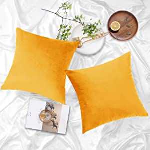 NEERYO Velvet Cushion Covers Solid Color Soft Square Decorative Sofa Throw Pillow Covers Pillowcase 20 X 20 Inch for Couch Bedroom Bed Farmhouse Decor Pillow Slipcovers Pack of 2 Gold