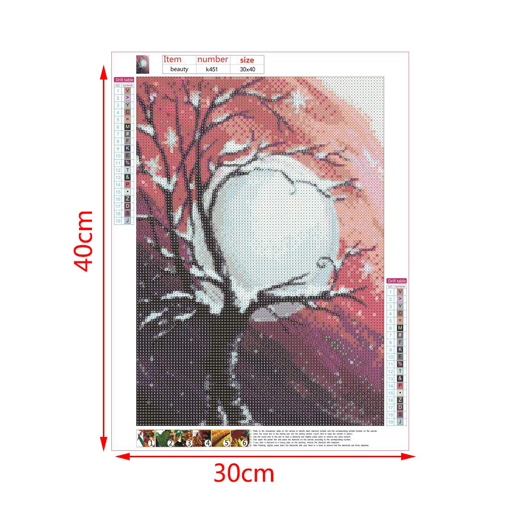 Kit de punto de cruz bordado con diamantes de imitaci/ón 5D AIYIYOO As the picture shown 1