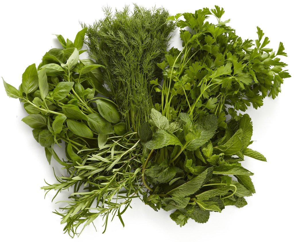Farmers Market Herb Bundle