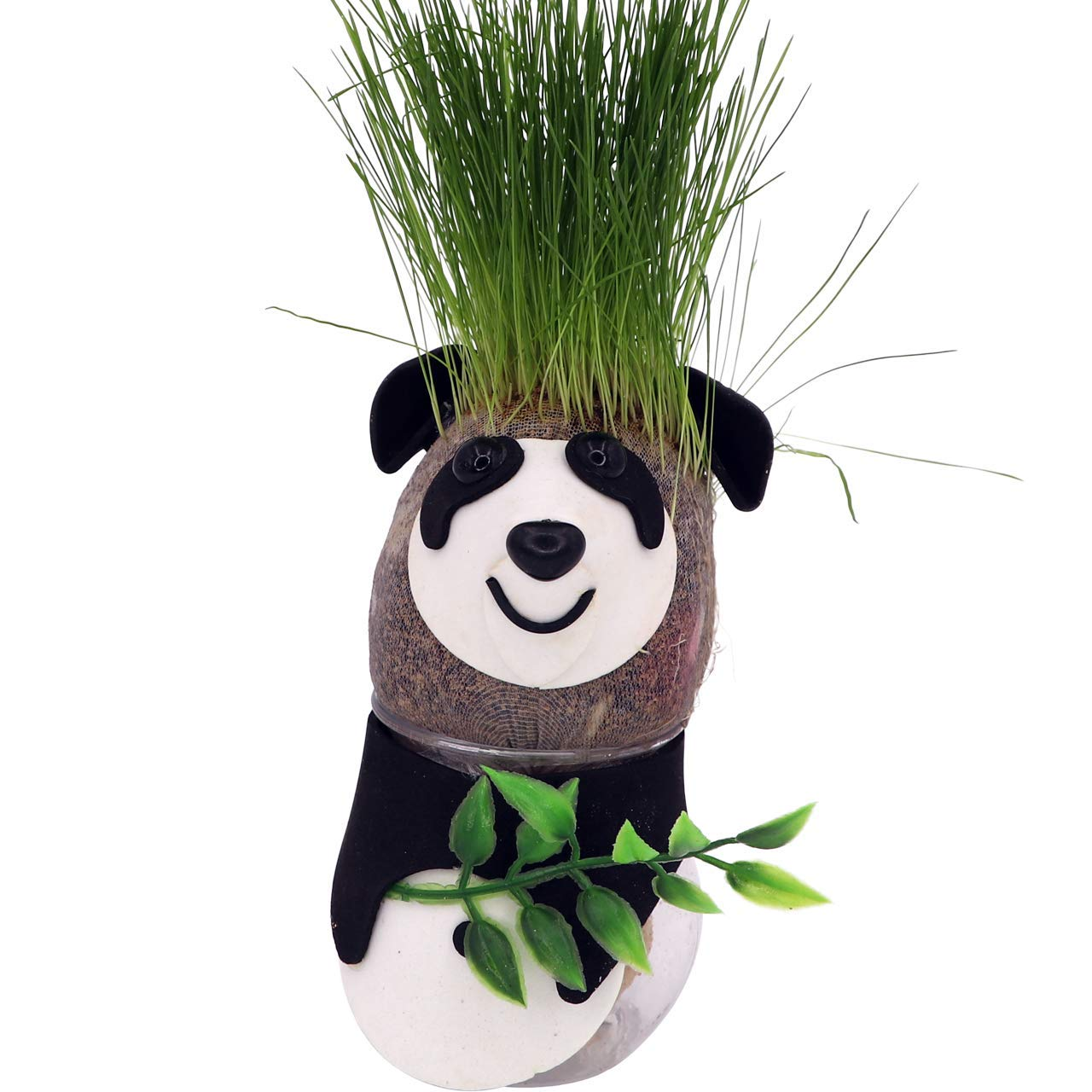 Grass Head - Funny Fast Growing Grass Head Learning Toy for Kids by AvoSeedo (Cat)