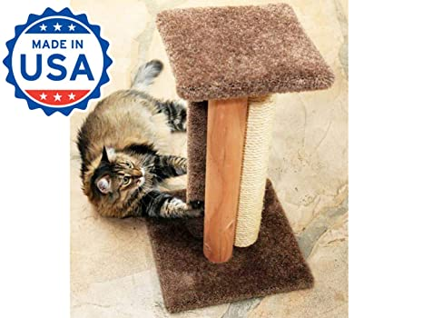 Amazon.com: EE. UU. Made Cat Scratching Post cama 24 inch ...