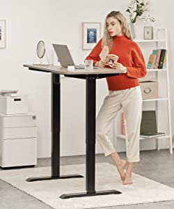 CLATINA Adjustable Height Standing Desk with Electric for Sit Stand Up Computer Home and Office 47 x 24 Inch Willow Top Black Frame - ASIER