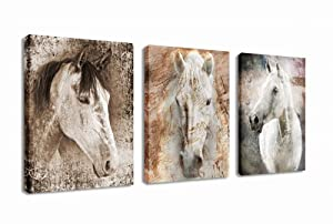"Canvas Wall Art Horse Picture Prints Modern Horses Artwork Vintage Abstract Painting Giclee Prints Contemporary Canvas Art for Home Office Decoration Framed Ready to Hang 12"" x 16"" 3 Pieces"