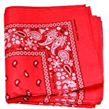 Paisley One Dozen Cowboy Bandanas (Red)