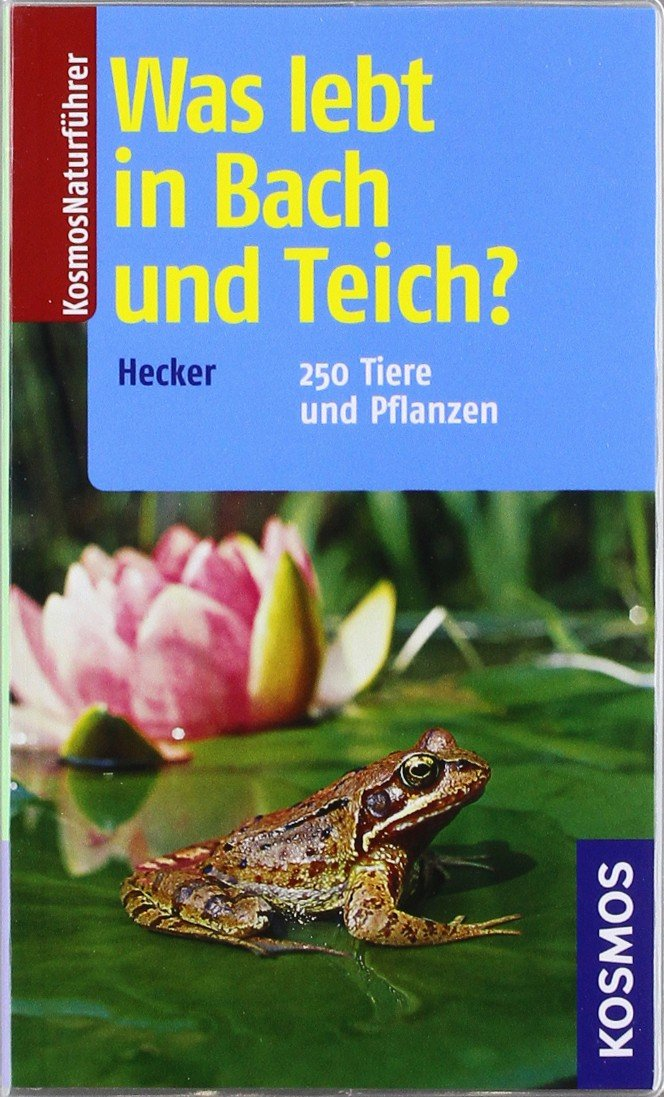 Was lebt in Bach und Teich?: 250 Tiere und Pflanzen