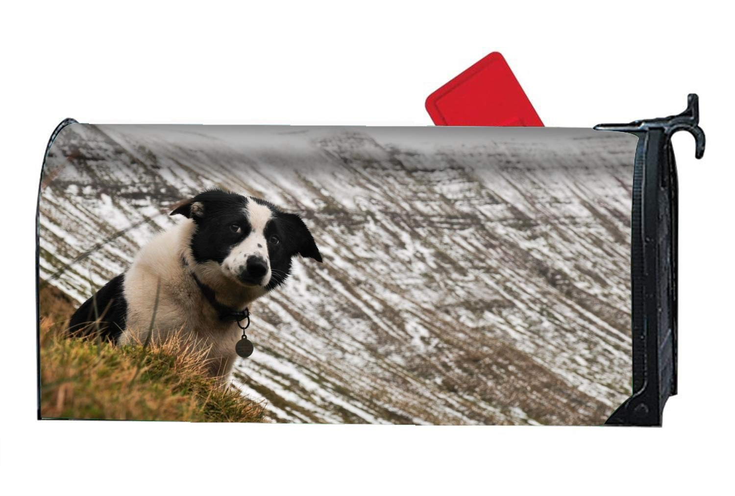 FANMIL Home Animal Border Collie Dogs Four Seasons Magnetic Mailbox Cover by FANMIL (Image #1)