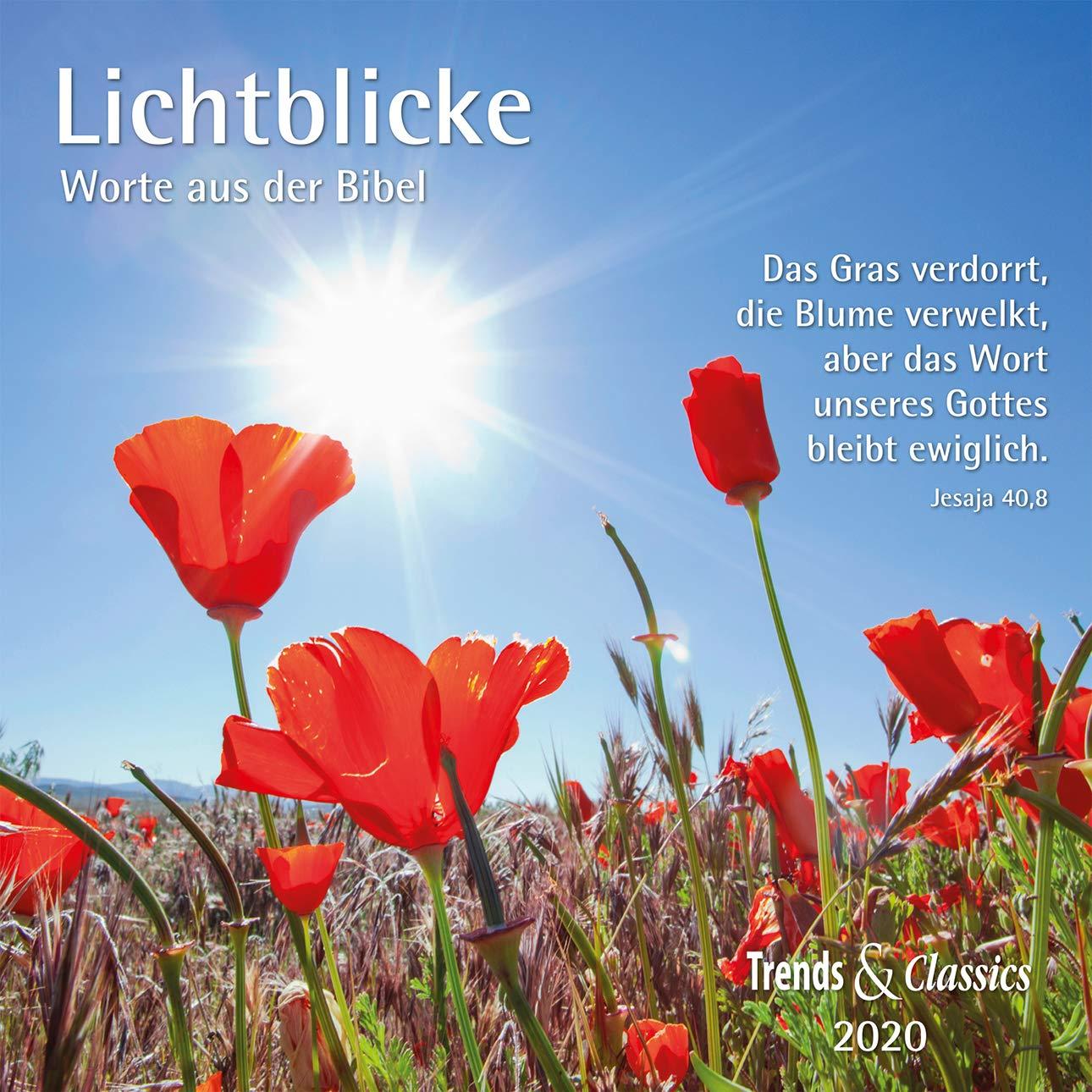Lichtblicke 2020   Broschürenkalender   Wandkalender   Mit Herausnehmbarem Poster Und Bibelzitaten   Format 30 X 30 Cm  Worte Aus Der Bibel