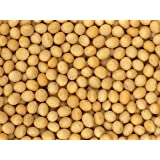 Premium Grade Non-GMO Soybeans Bulk Great Price (20 Pounds)