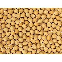 Premium Grade Non-GMO Soybeans Bulk Great Price (5 Pounds)