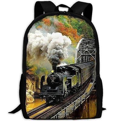 SARA NELL School Backpack Train Bookbag Casual Travel Bag For Teen Boys Girls (One_Size, big smoke train) | Kids' Backpacks