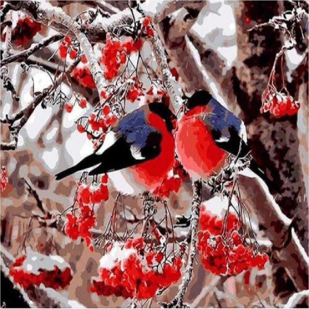 40x50cm  jjyyh Peintures par Numéros Oiseau sur l'arbre 120X160Cm Bricolage Peinture à l'huile Linen Toile pour Adultes Les Enfants Débutants des Gamins' Jouet Numéros Peinture par Décoration Murale