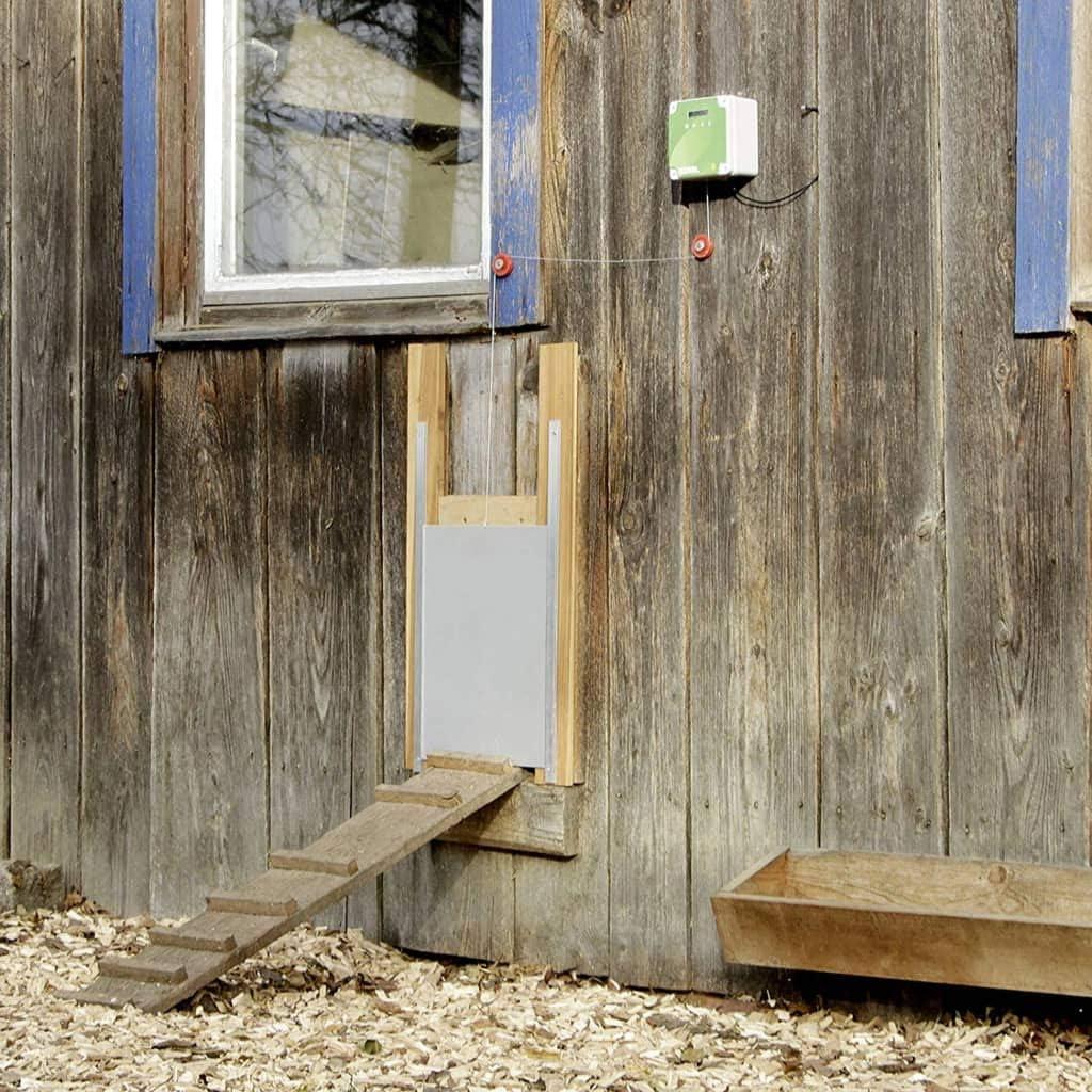 Kerbl - Puerta de gallina automática para gallinas (300 x 400 mm): Amazon.es: Productos para mascotas