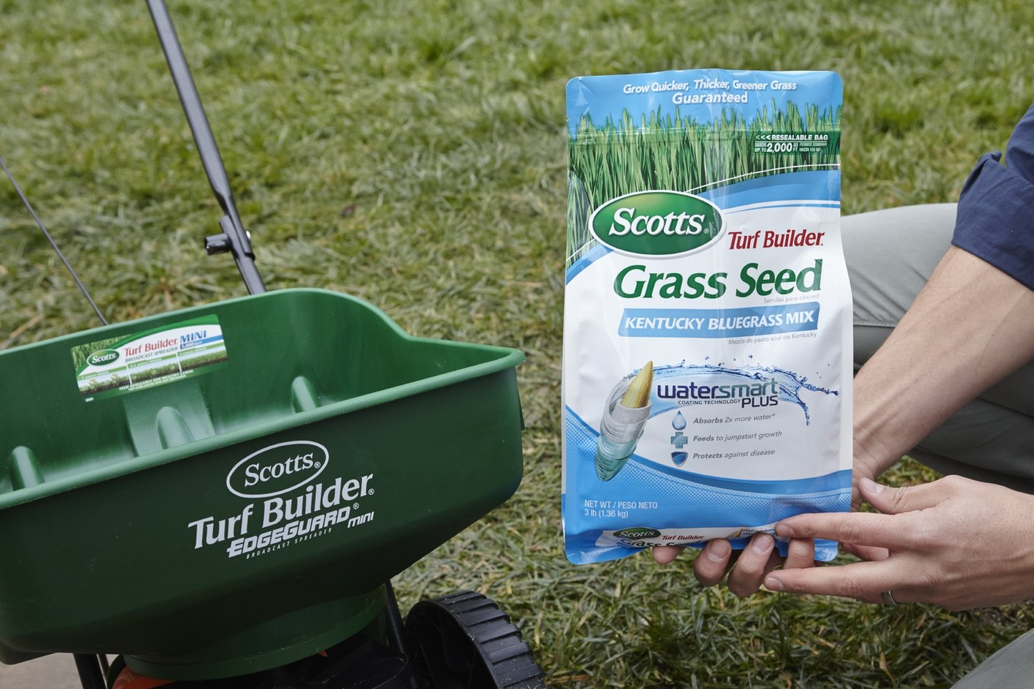 Scotts Turf Builder Grass Seed Image 1