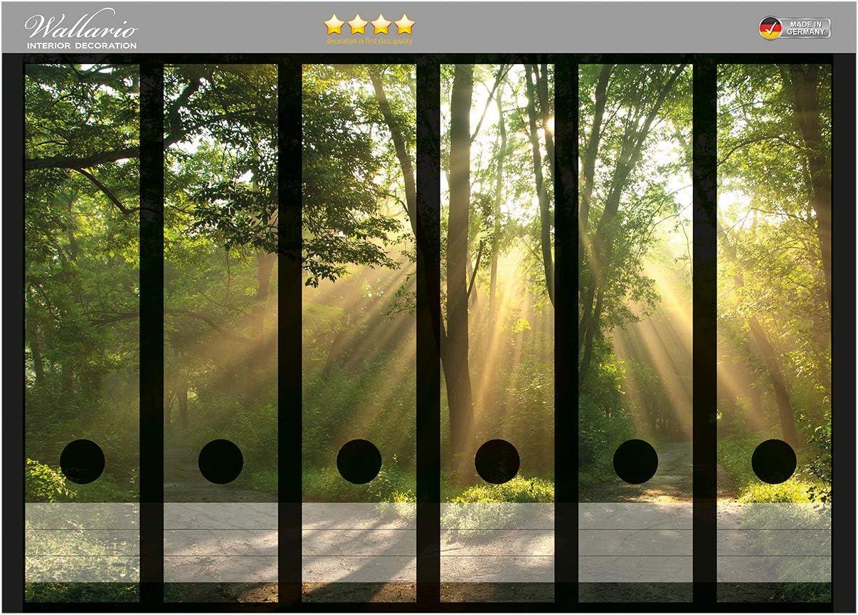 Wallario Ordnerr/ücken Sticker Weggabelung im Sonnenschein in Premiumqualit/ät passend f/ür 8 schmale Ordnerr/ücken Gr/ö/ße 8 x 3,5 x 30 cm