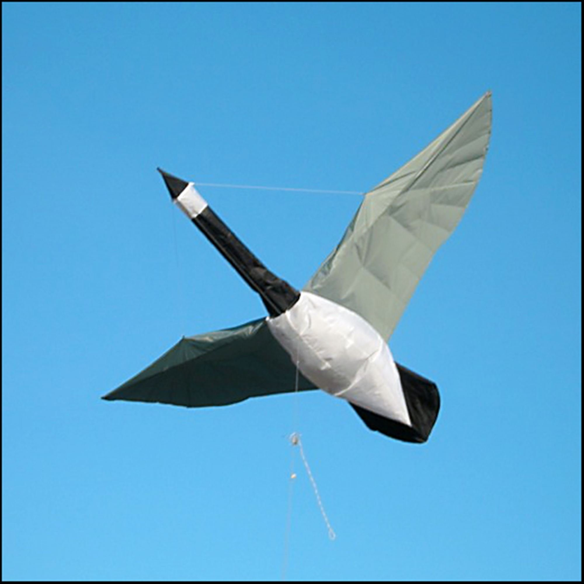 Martin Lester Barnacle Goose Kite