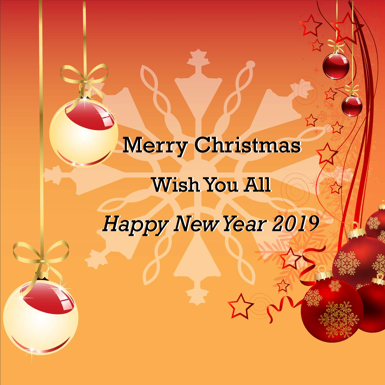 Amazon.com: Merry Christmas & Happy New Year 2019 Wish Banner, Heavy ...