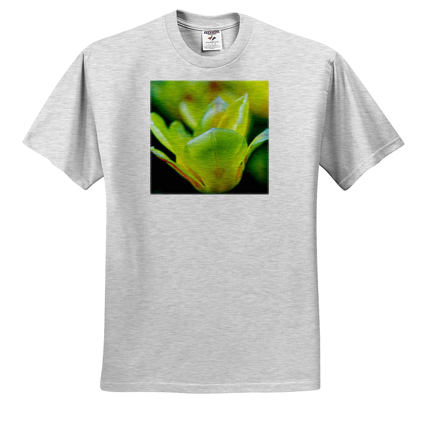 Closeup View of a Yellow Tulip Flower 3dRose Alexis Photography Spring Beauty T-Shirts Flowers Tulips