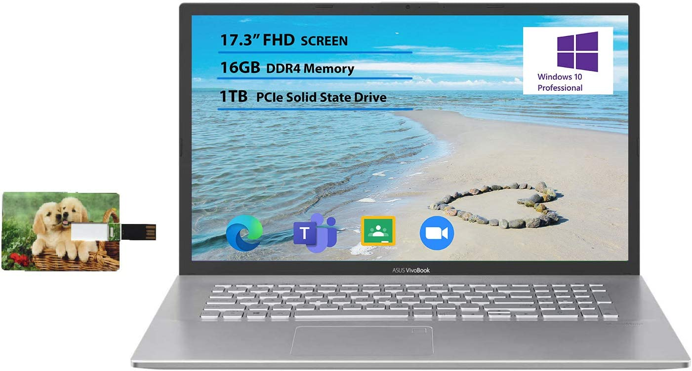 "Newest Flagship Asus VivoBook 17 Business Laptop 17.3"" FHD Display AMD Ryzen 3 3250U Processor 16GB RAM 1TB SSD USB-C HDMI SonicMaster for Business and Student Windows 10 Pro | 32GB Tela USB Card"