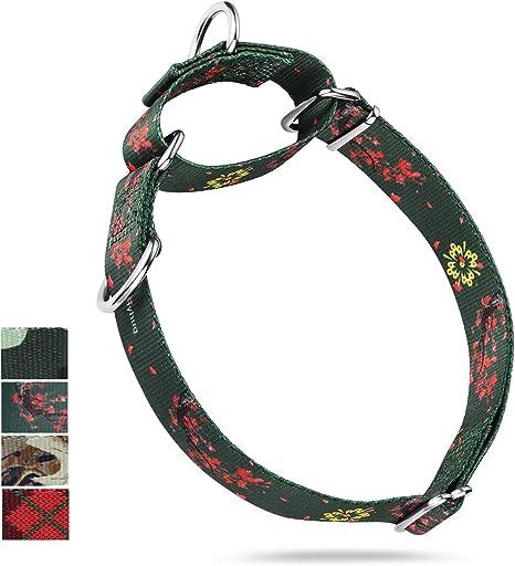 Collar de perro Martingale de doble anillo mejorado duradero para ...