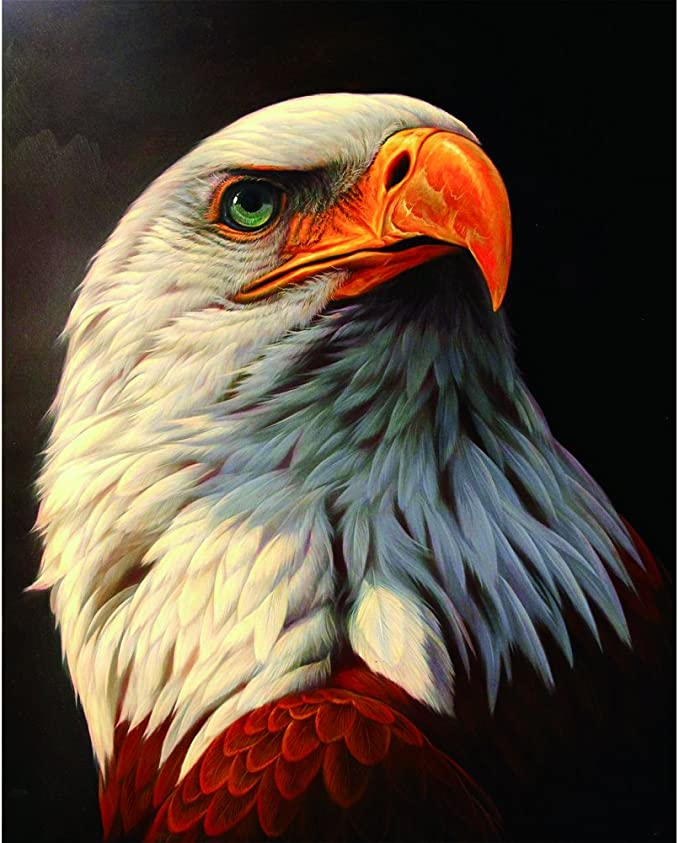 LLguz Eagle 5D Embroidery Paintings Rhinestone Pasted DIY Diamond Paintings Part Round Embroidery Kits Arts Home Decoration Wall Decoration