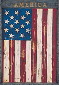 Toland Home Garden America 12.5 x 18 Inch Decorative Rustic Patriotic Red White Blue Star Stripe Wheat Garden Flag