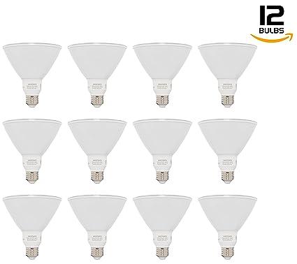 Westgate Lighting PAR38 13W LED Light Bulb- Best LED Bulb ...
