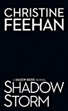 Shadow Storm (A Shadow Riders Novel Book 6)